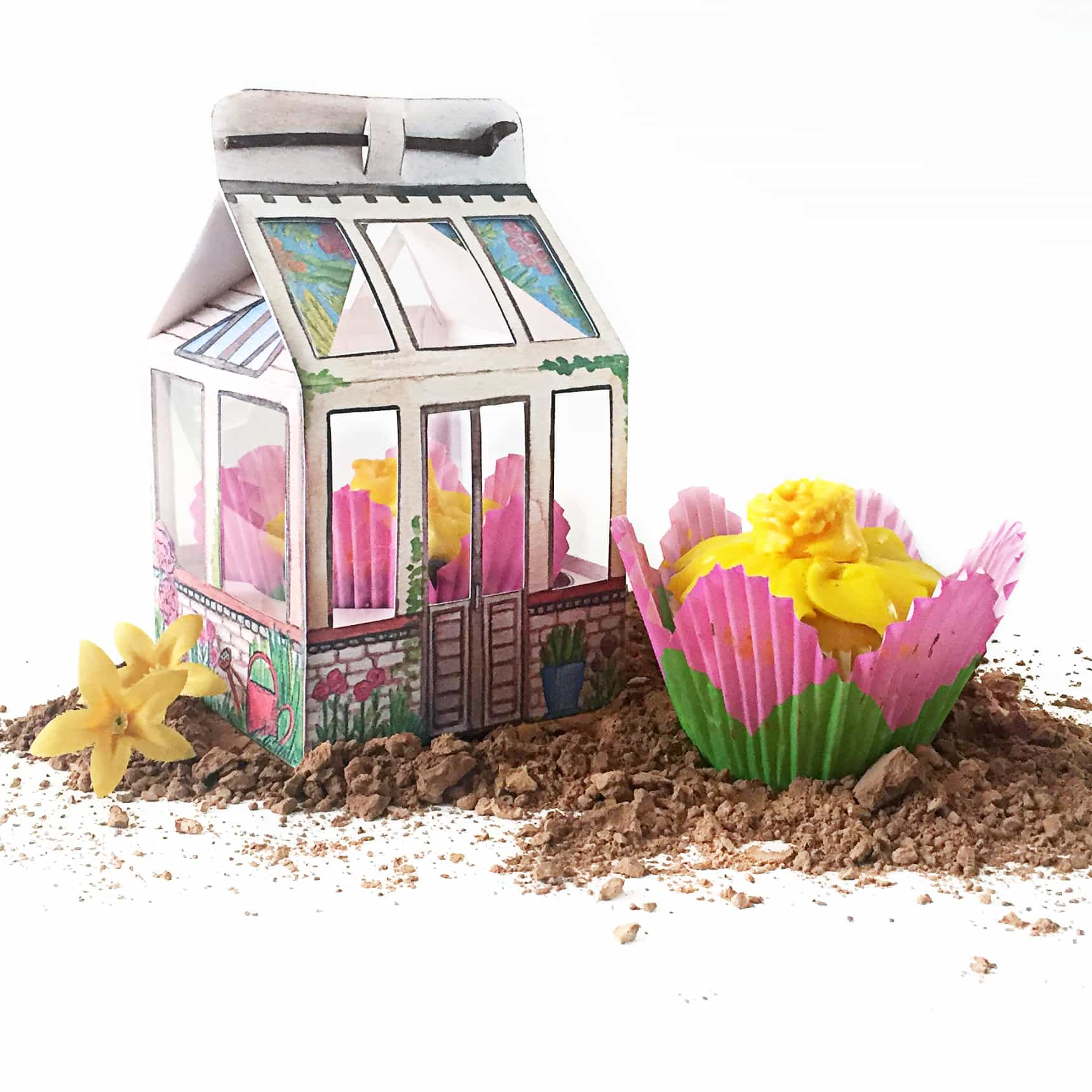 Greenhouse Gift Box with flower cupcake sitting in dirt.