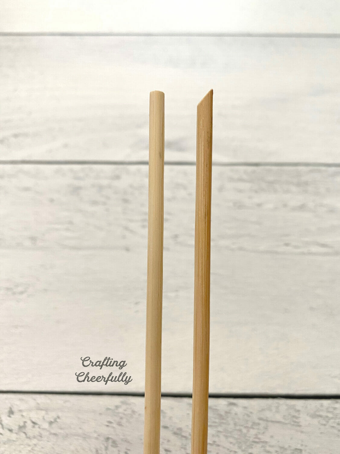 The ends of two wooden dowels are shown, one has been sanded at an angle.
