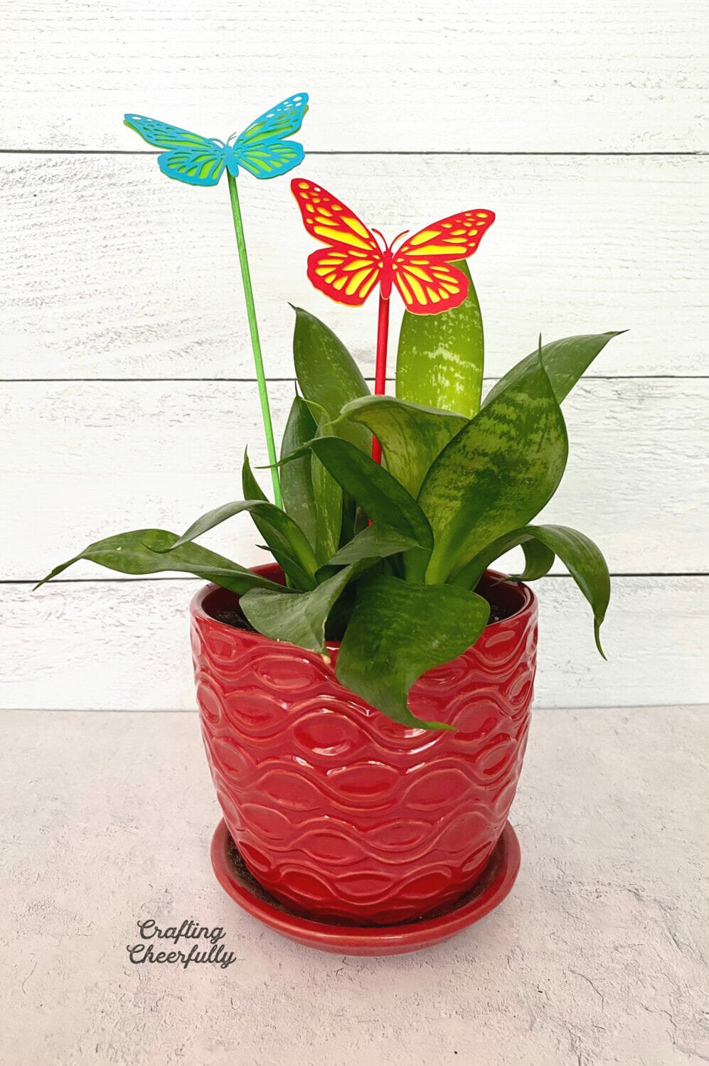Butterfly plant stakes are in a house plant.