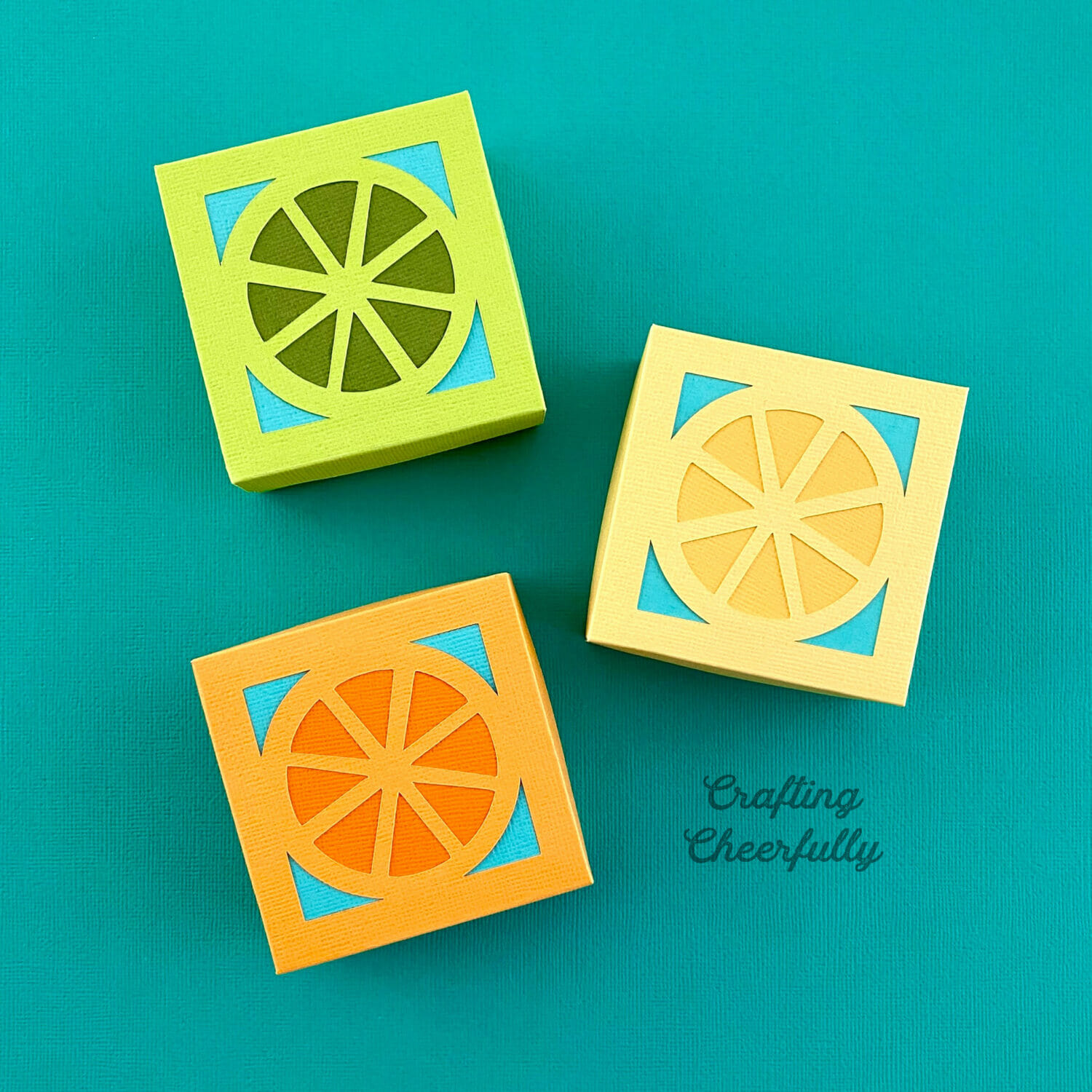 Citrus fruit boxes on a turquoise background